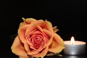 rose-und-windlicht